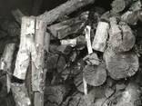 Древесный уголь из сосны , яблоня, береза. - фото 1