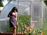 Kasvuhoonete müük tootjalt Valgevene Vabariigis - фото 1