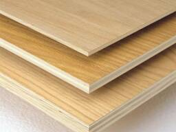 Plywood birch 2440*1220 and 1520*1520