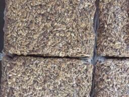 Продаём грецкий орех от тонны - photo 4