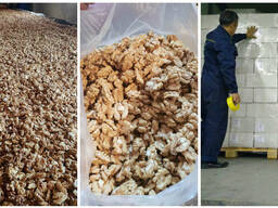 Walnut wholesale, from Kyrgyzstan / Manufacturer - photo 3