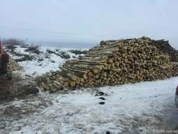 Закупка круглого леса на дрова