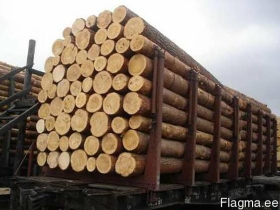 Закупка круглого леса на экспорт
